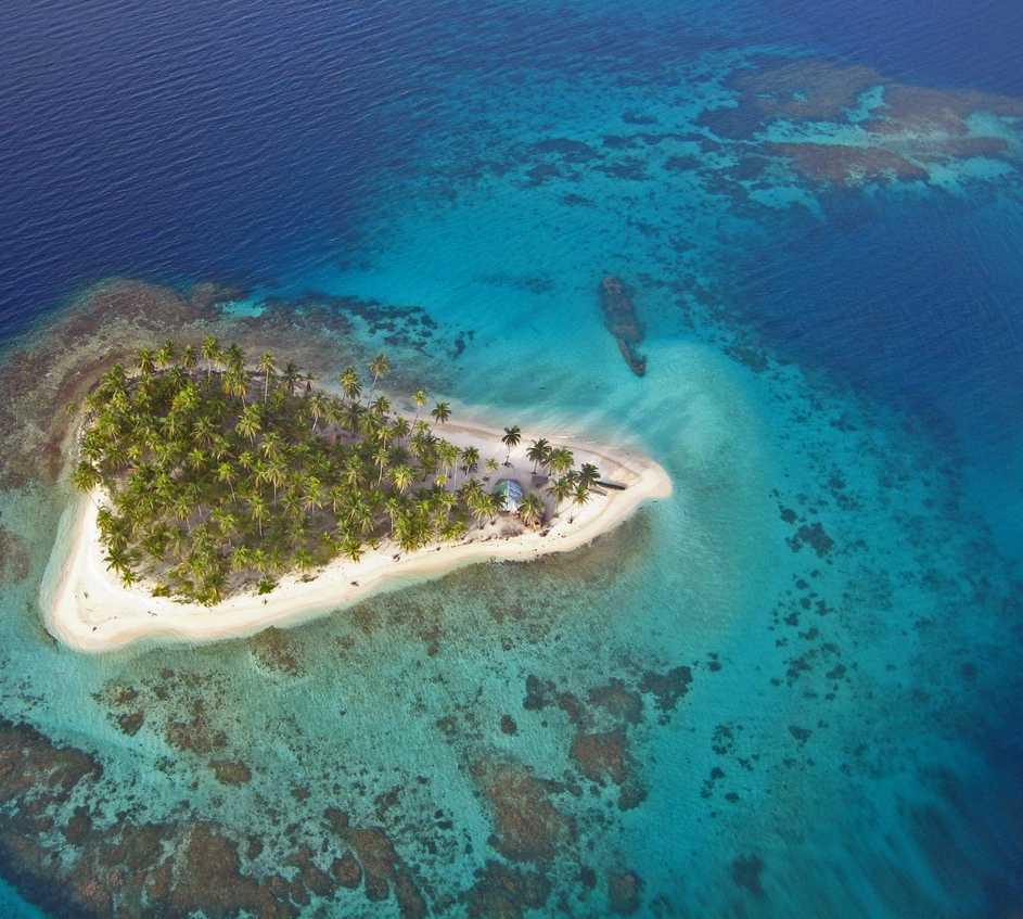 Arrecife de coral en Isla Perro