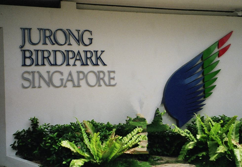 Pared en Jurong Bird Park