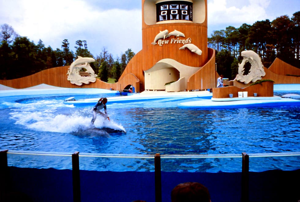 Vacaciones en Sea World Orlando