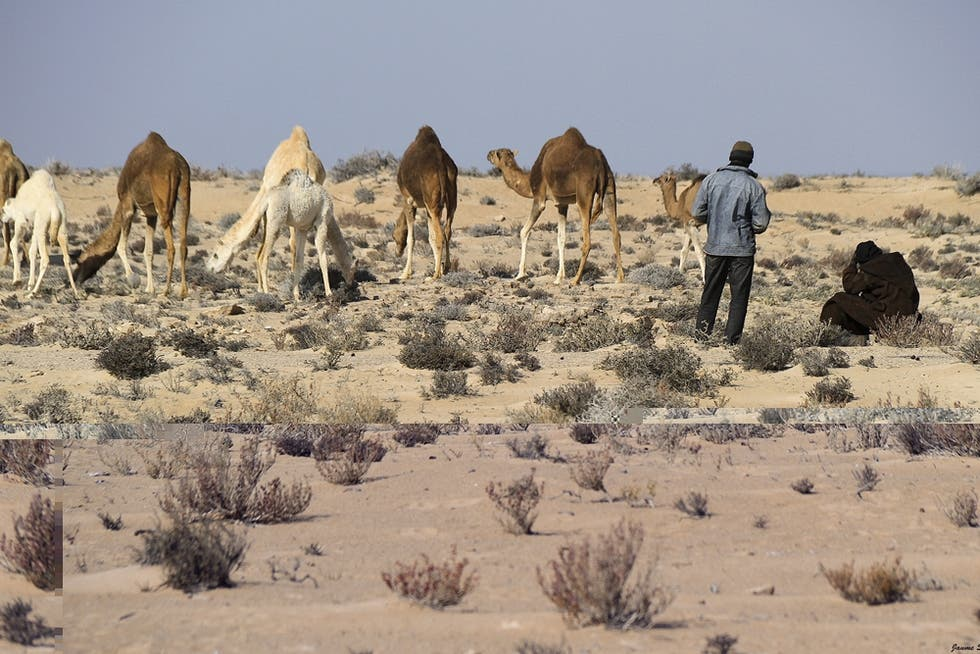 Mare a Sahara Occidentale