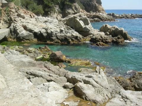 Shore in Lloret de Mar