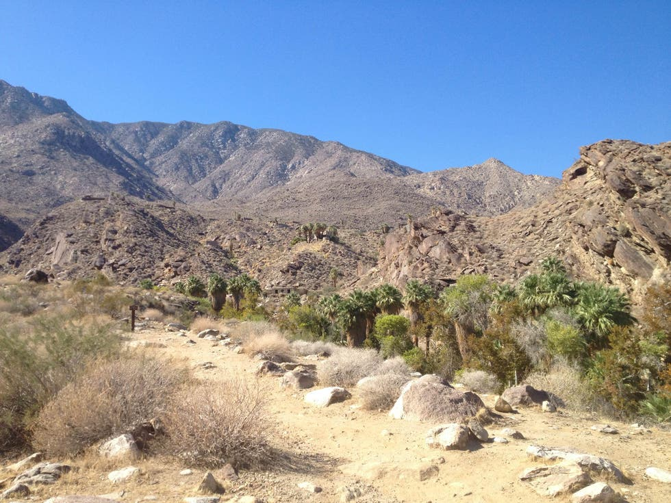 Wilderness in Palm Springs