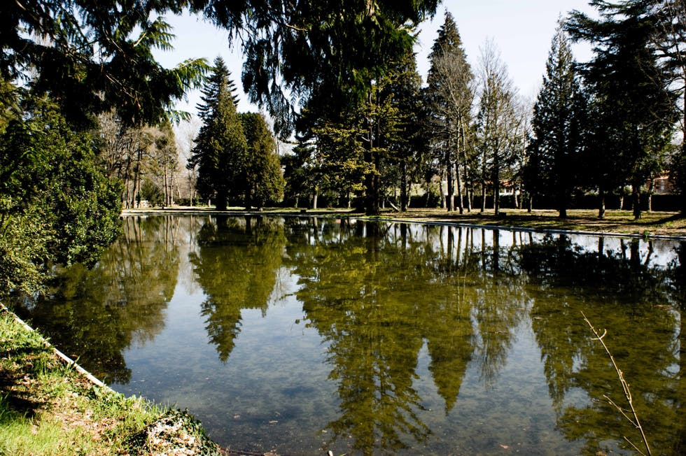 Reflection in Chaves