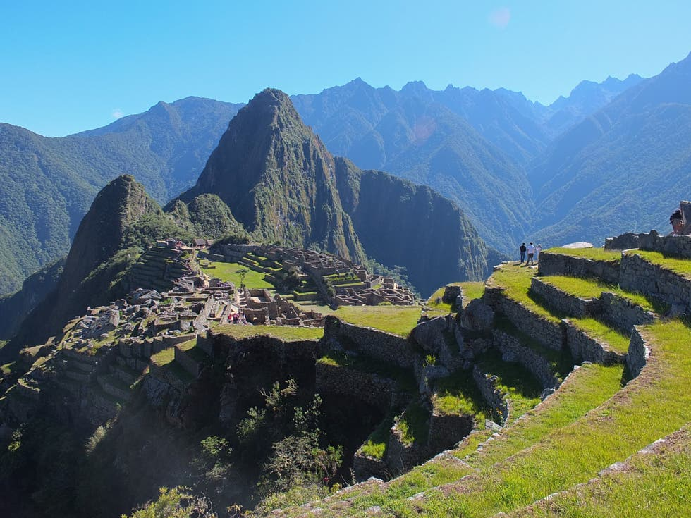 Wilderness in Machu Picchu