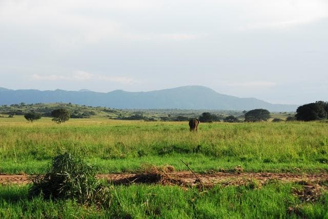 Estate in Kidepo Valley National Park