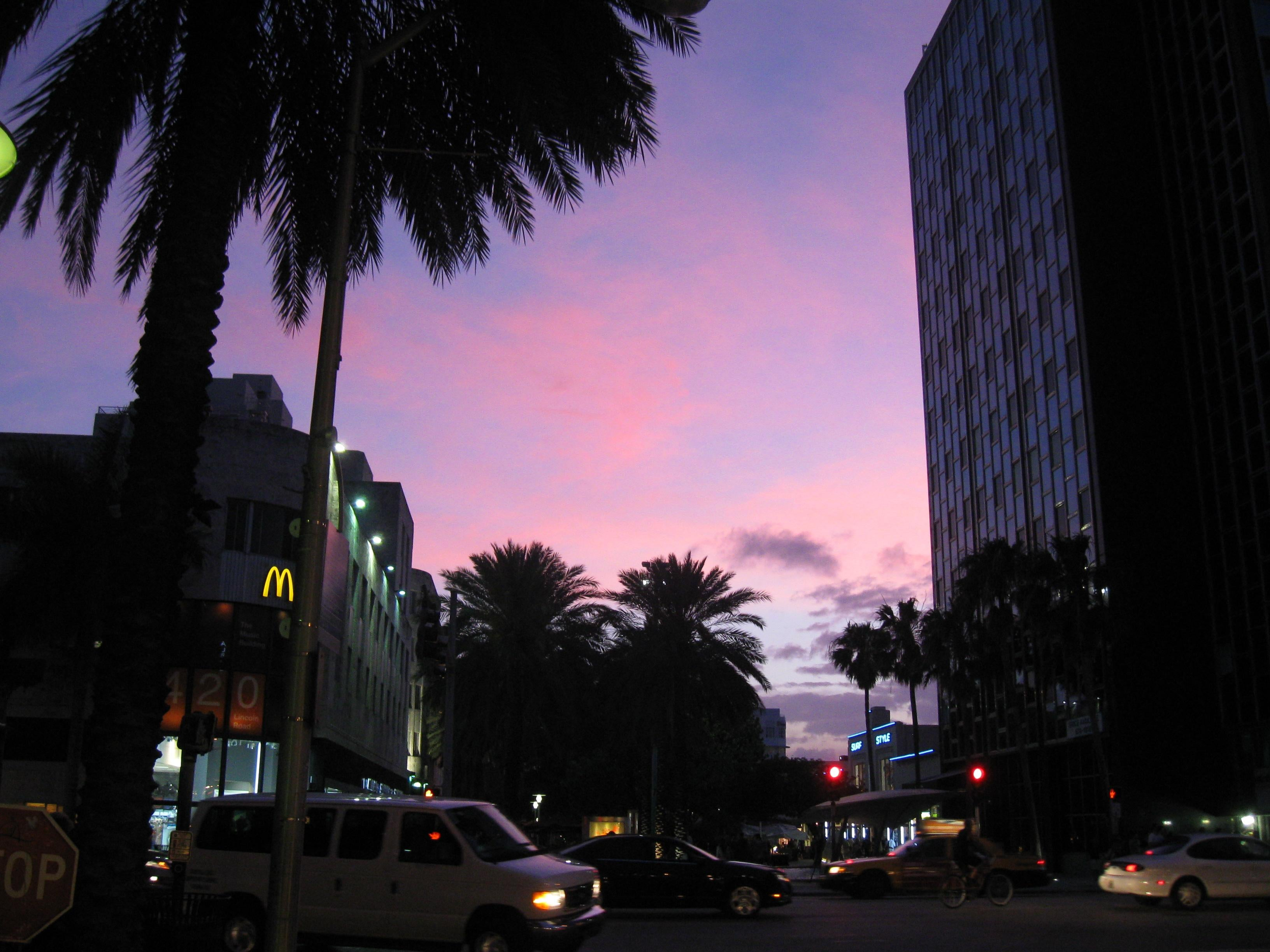 Purple in Miami Beach