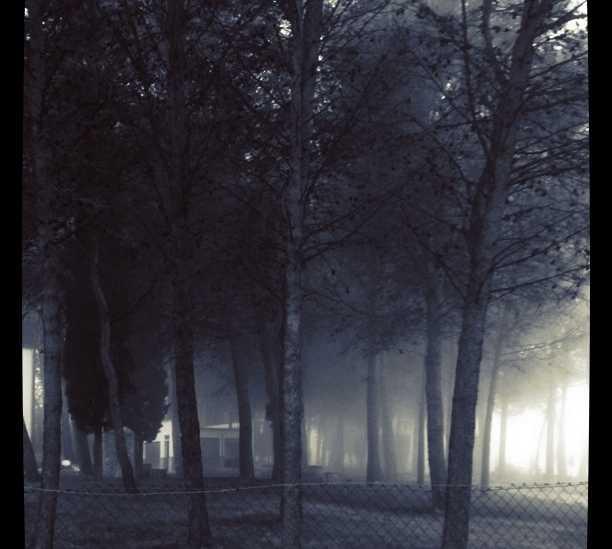 Noche en Alfarnate