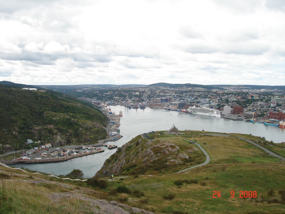 Green in Newfoundland and Labrador