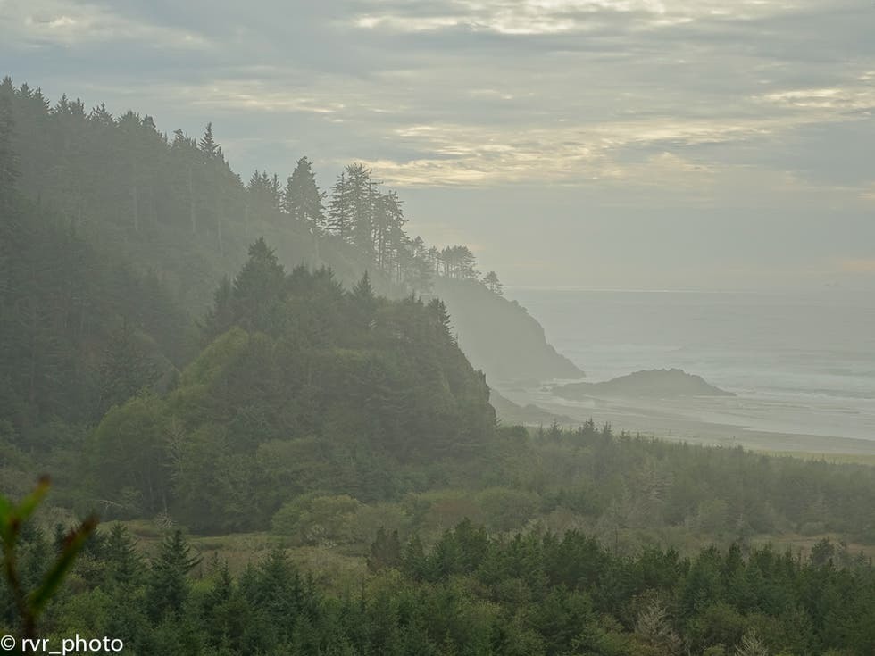 Naturaleza en Cape Disappointment State Park