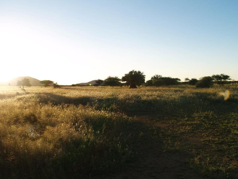 Pradera en Erindi Private Game Reserve