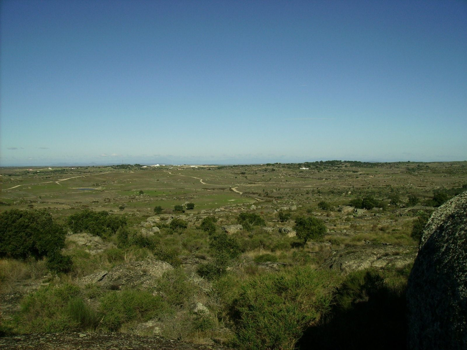 Plain in Navas del Madroño