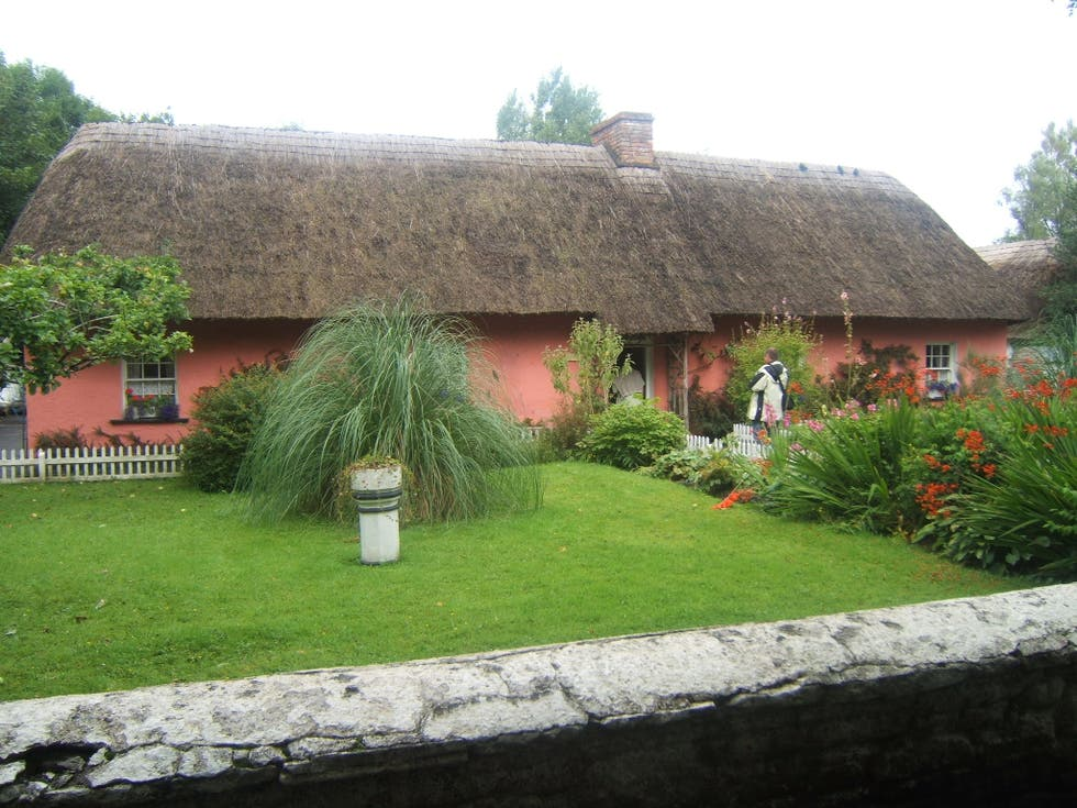Thatching in Shannon