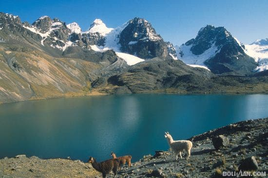 Wilderness in Bolivia