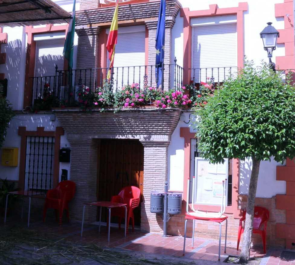 Flor en Ayuntamiento de El Burgo