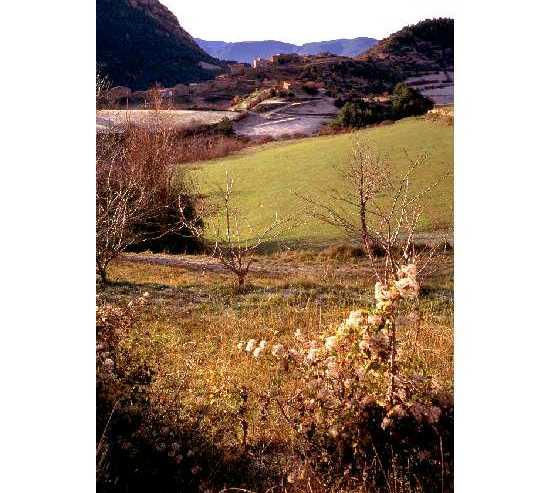 Wilderness in Josa i Tuixén