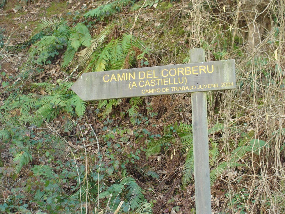 """Cammino a Route """"the slope of the saddle"""" or """"Corberu Forest"""""""