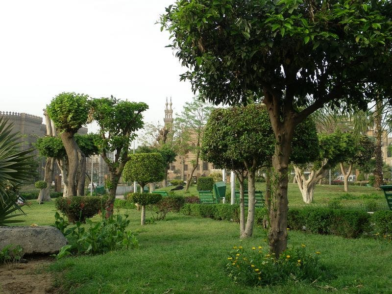 Photos Of The Galaa Gardens Images