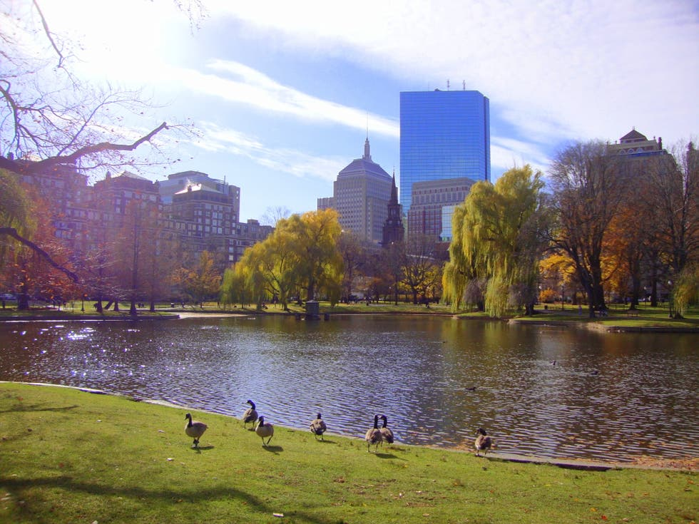 Río en Boston Public Garden