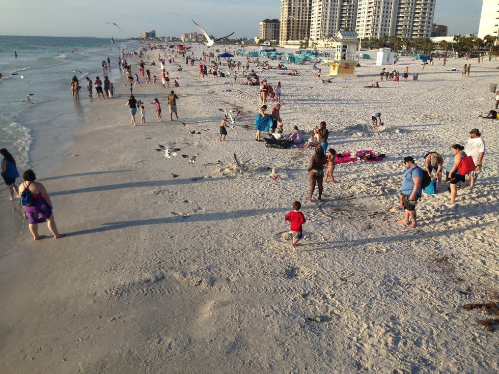 Shore in Clearwater