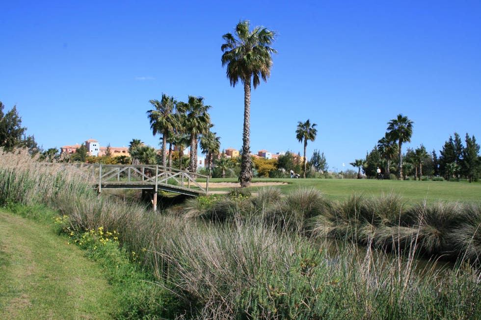 Golf Isla Canela Green del 4