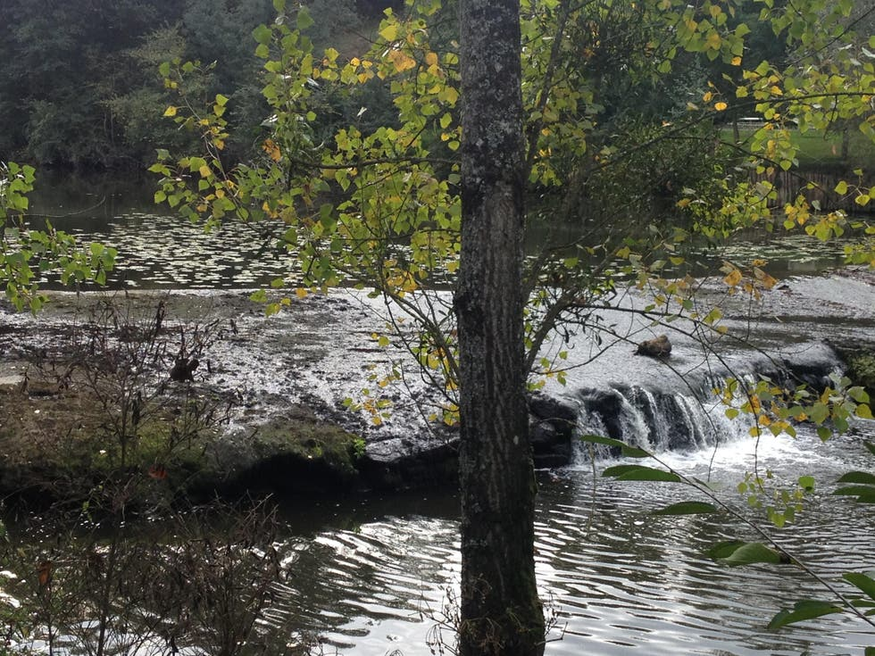 Water in Saint-Hilaire-de-Loulay