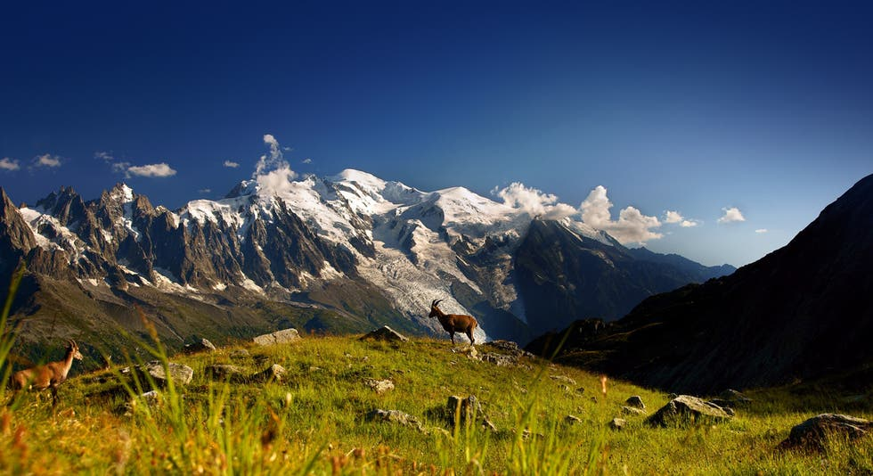 Wilderness in Chamonix-Mont-Blanc