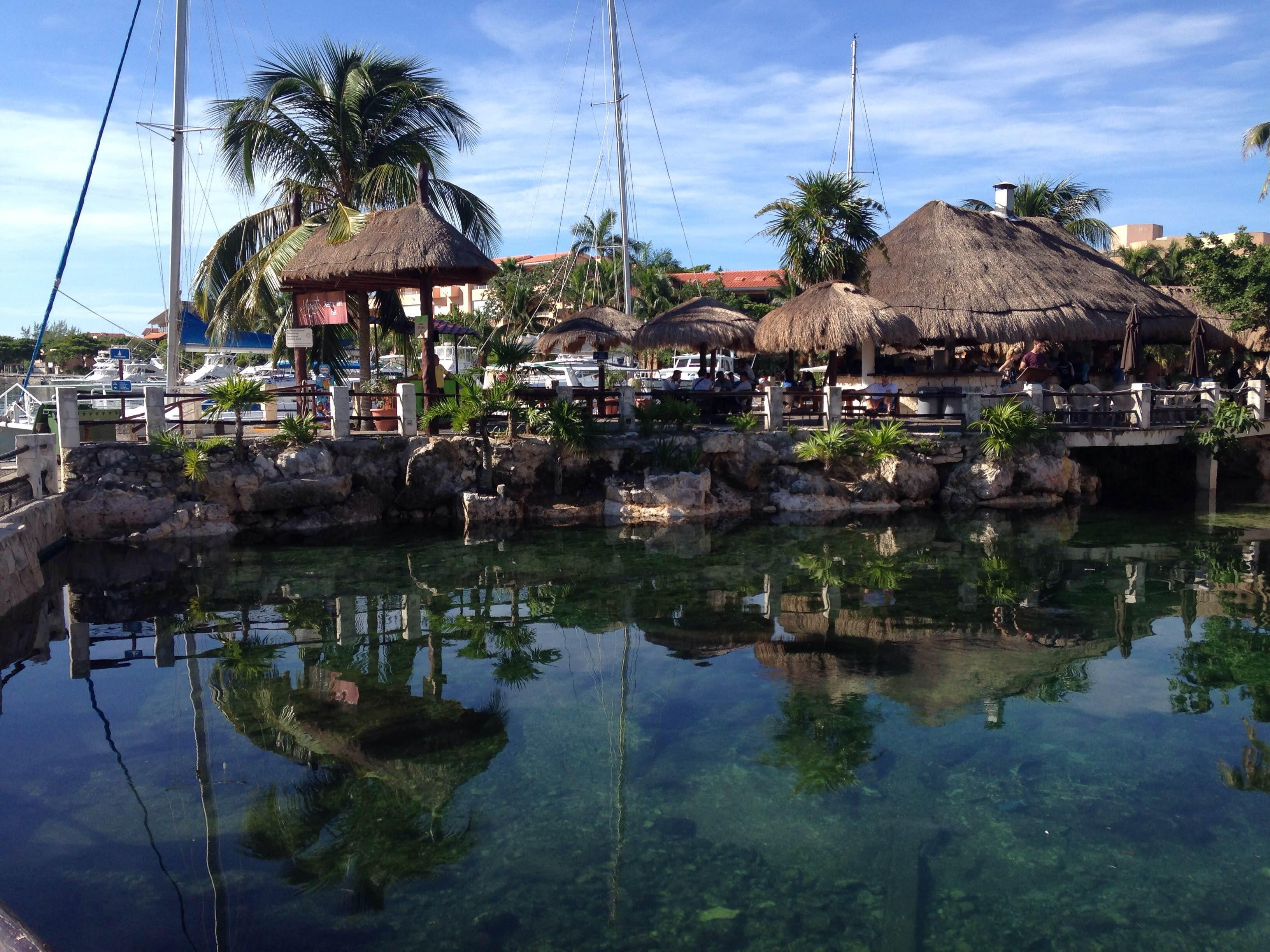 Photos of Dolphin Discovery Riviera Maya - Images