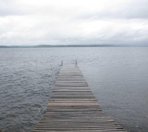 Orilla en Lago Puyehue