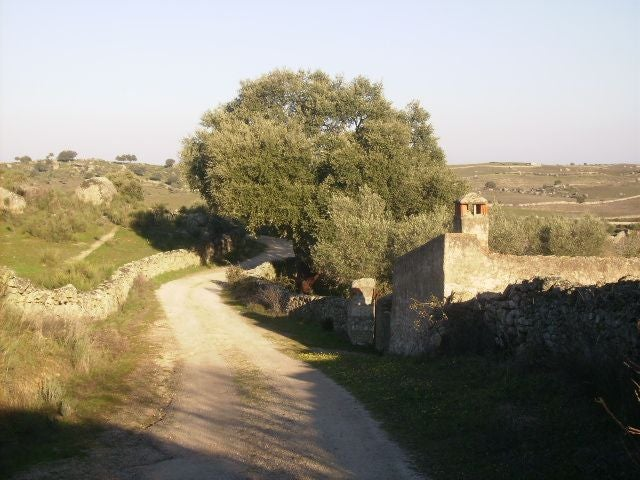 Hill in Navas del Madroño