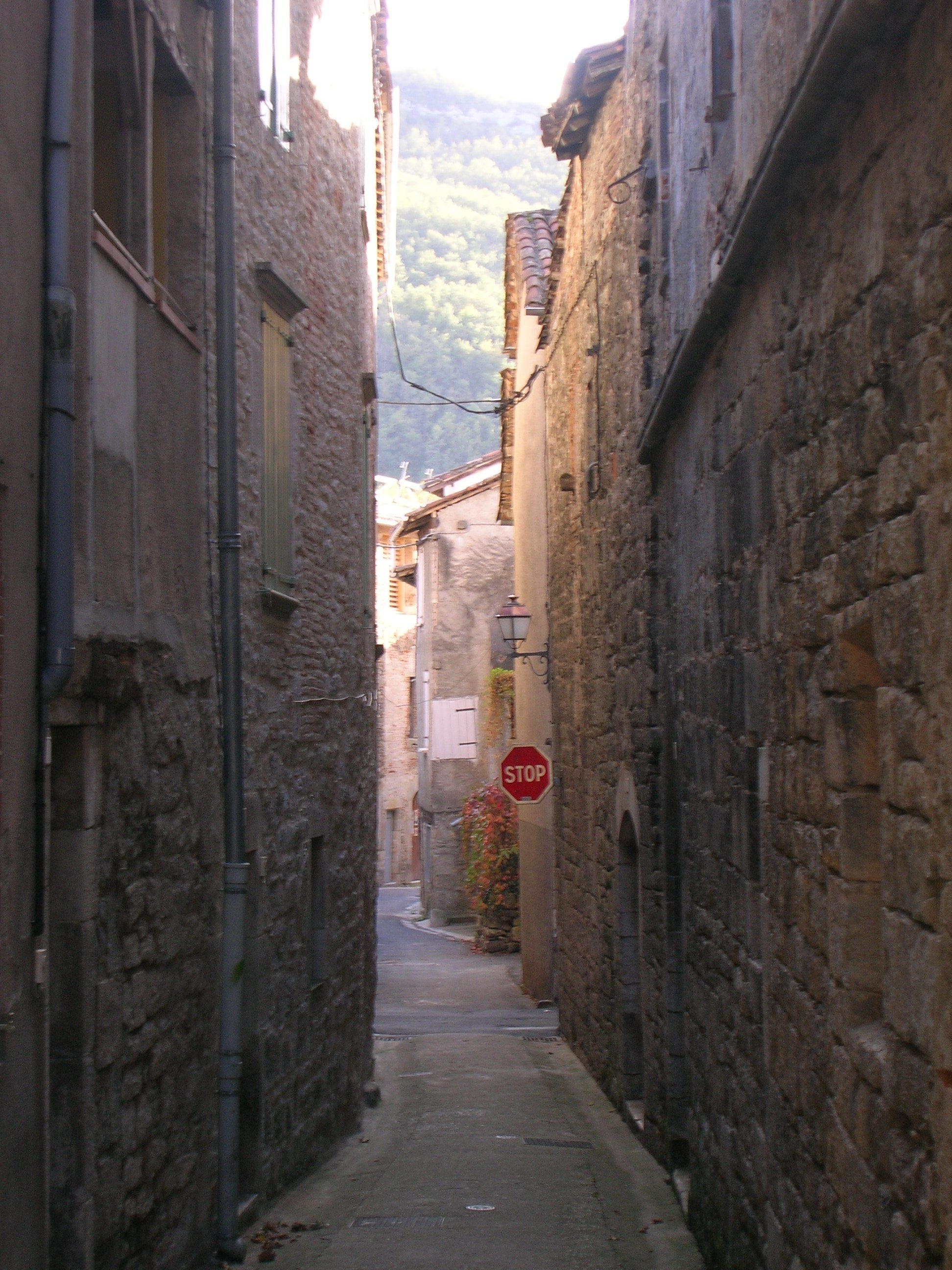 Calle en Saint-Antonin-Noble-Val
