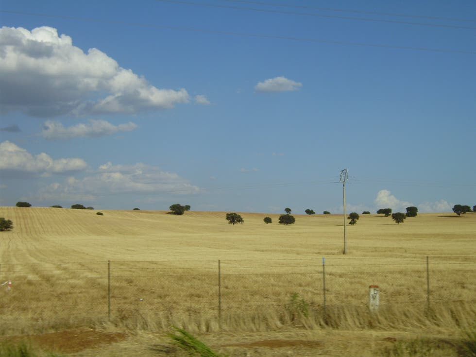 Steppa a Landscapes of Castilla