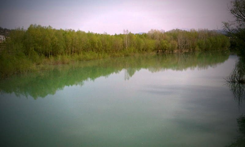 Reflection in Graus
