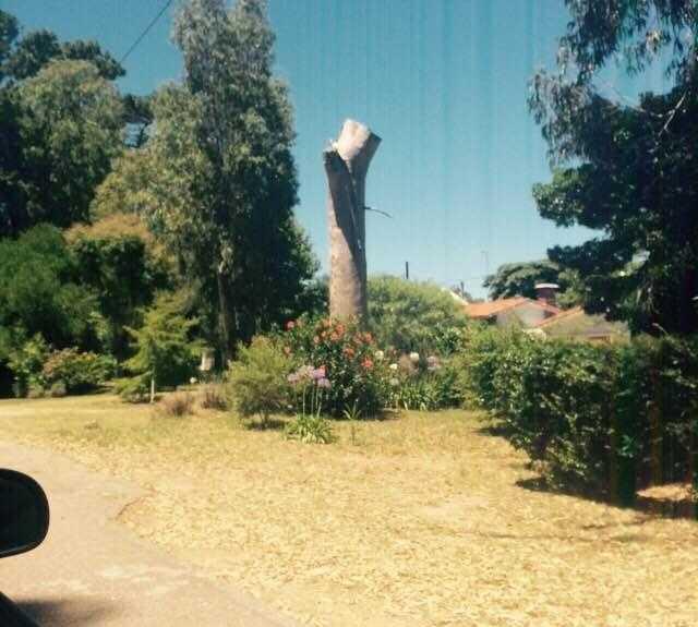 Sculpture in La Floresta