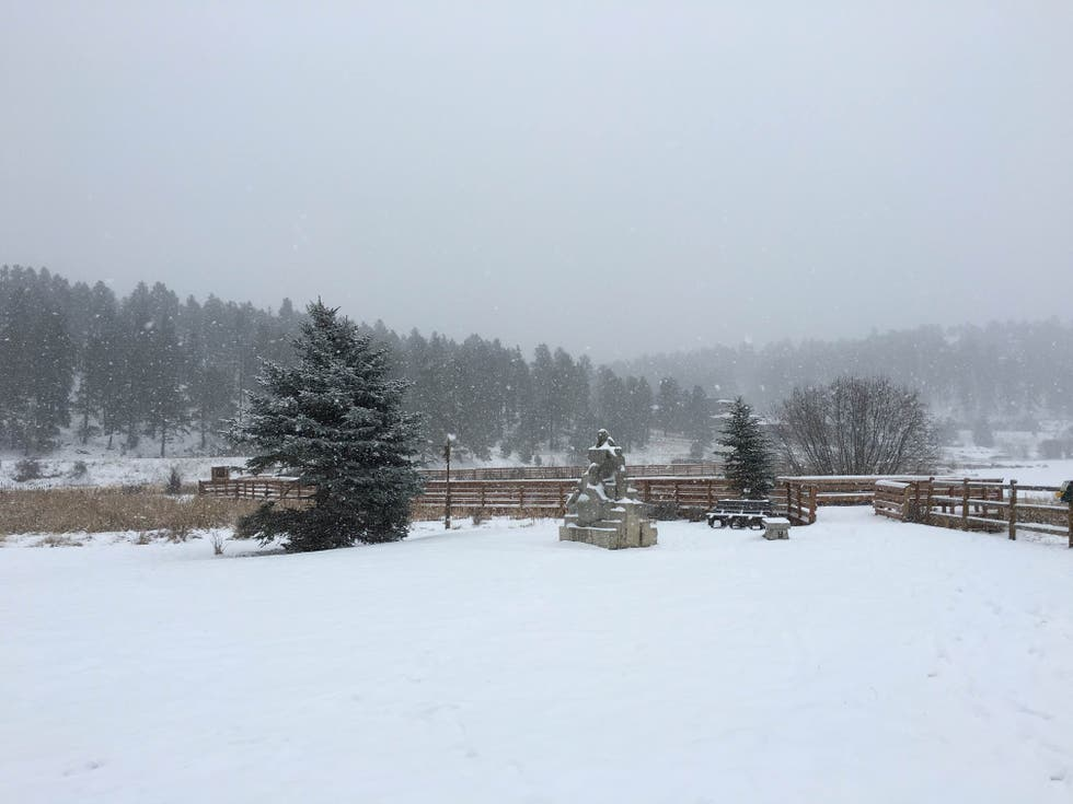 Snow in Evergreen