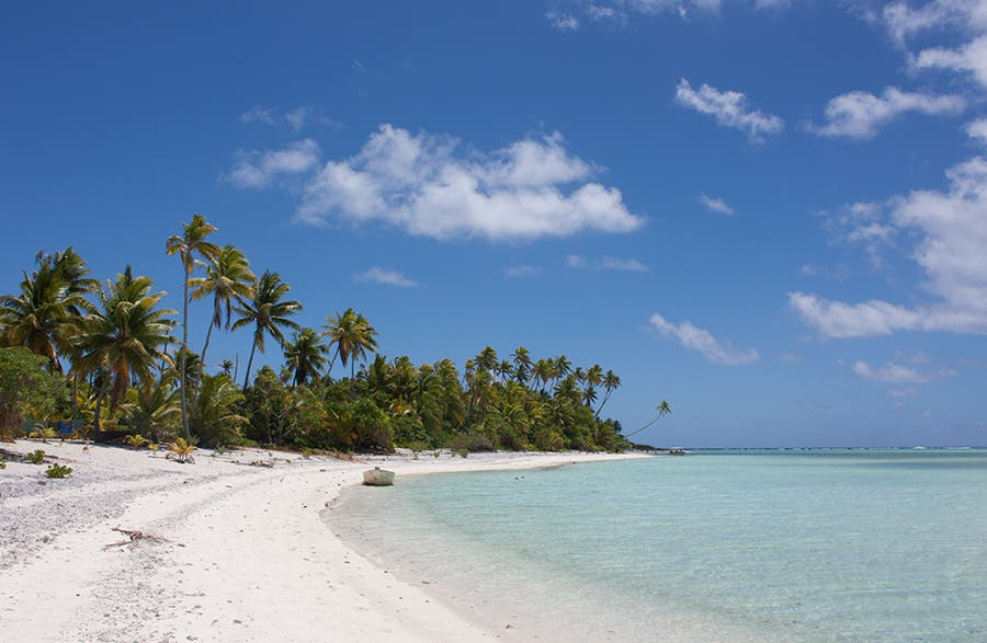 Shore in Aitutaki