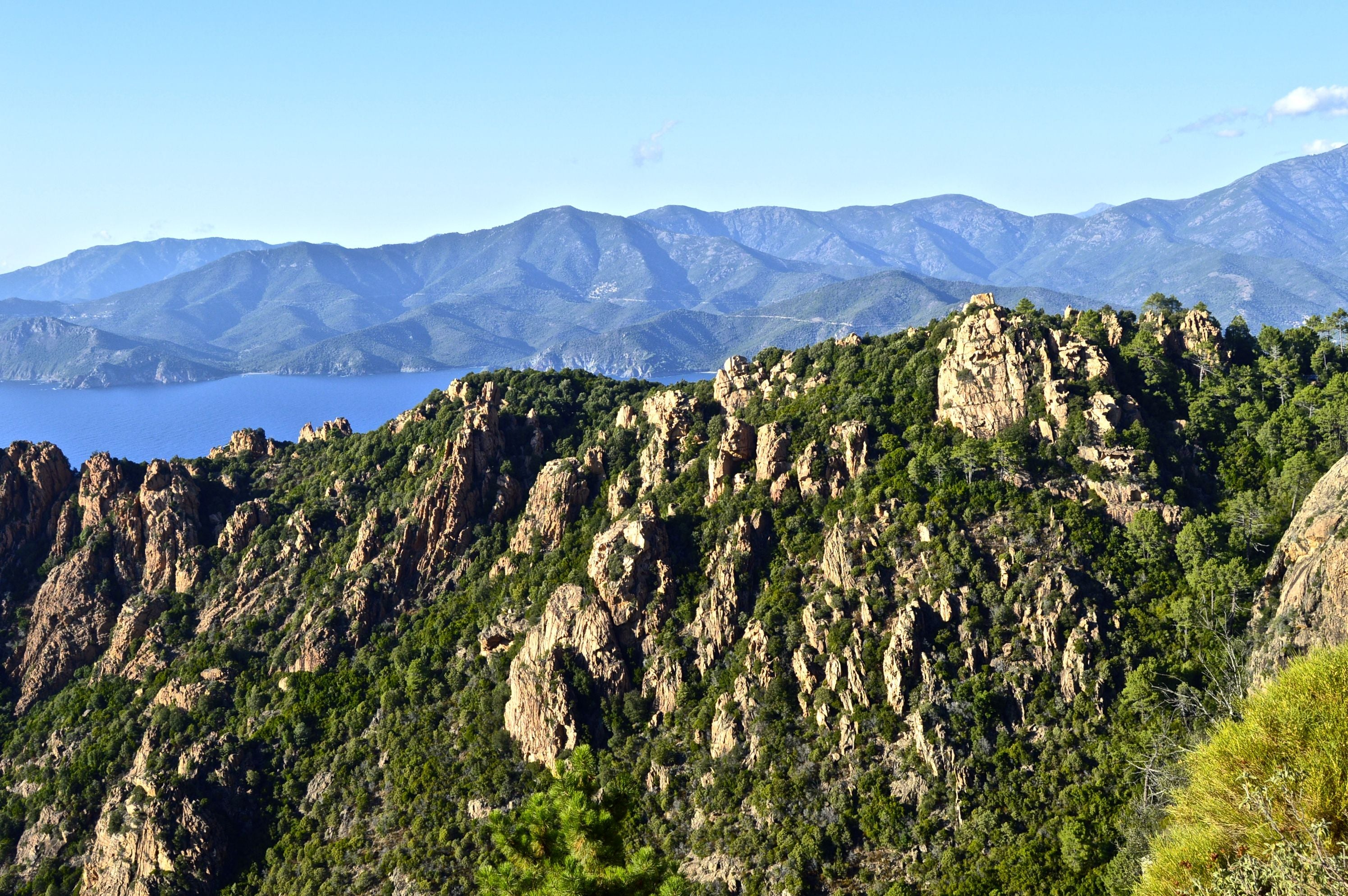 Forest in Mirador de Calanches de Piana