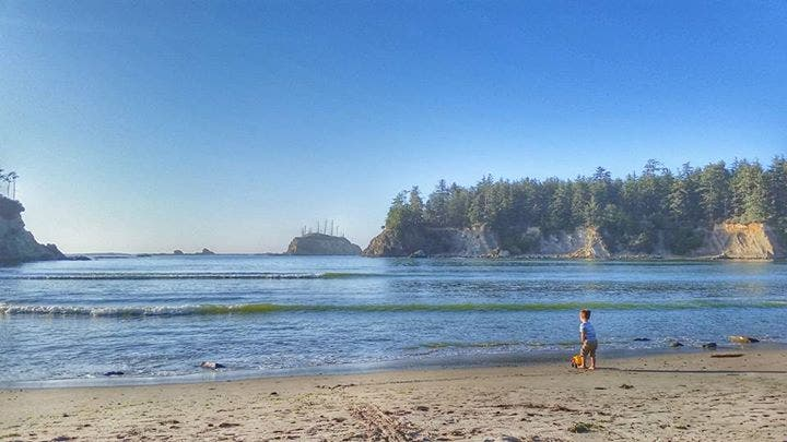 Mare a Coos Bay