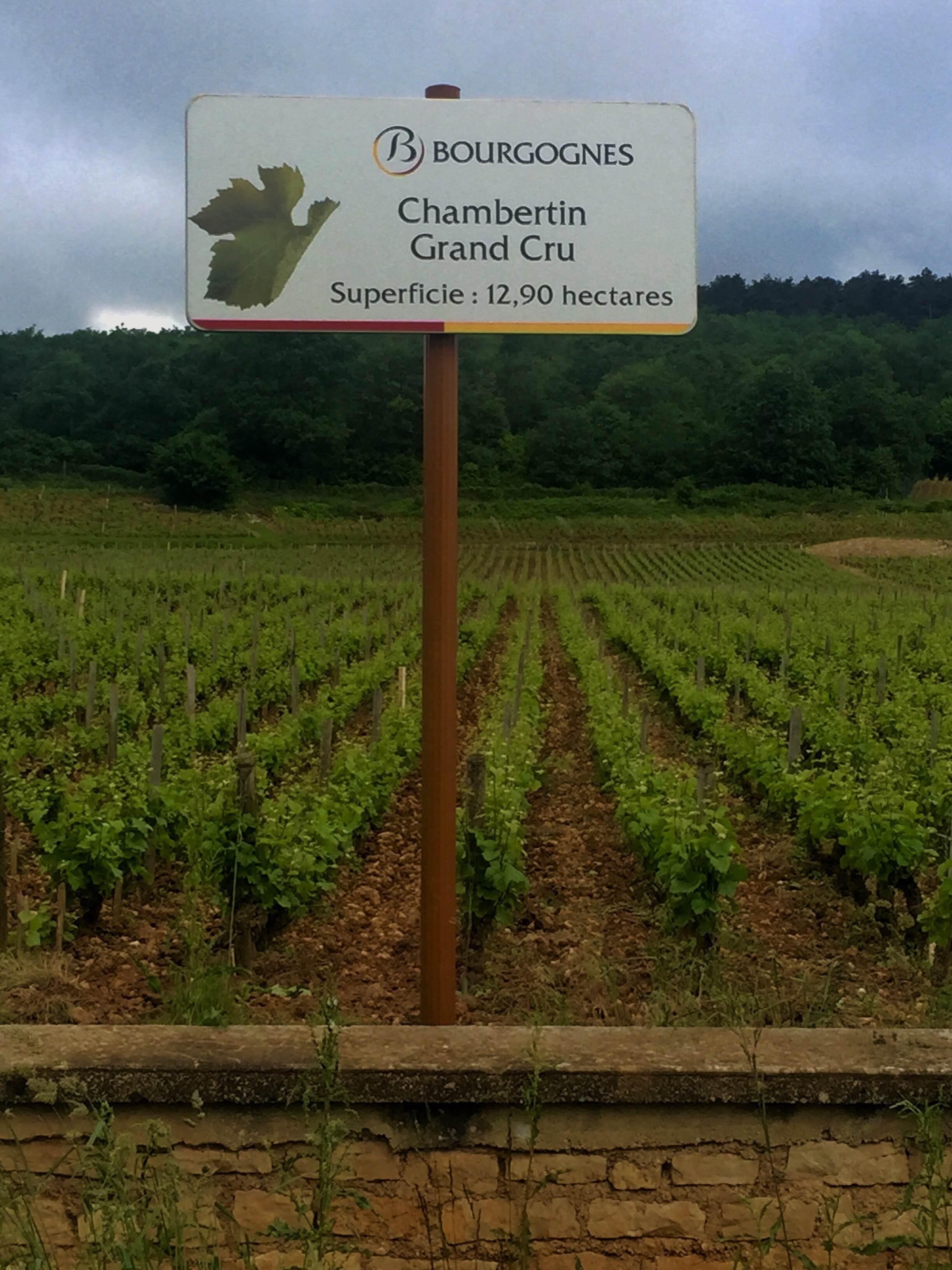 Agriculture in Gevrey-Chambertin