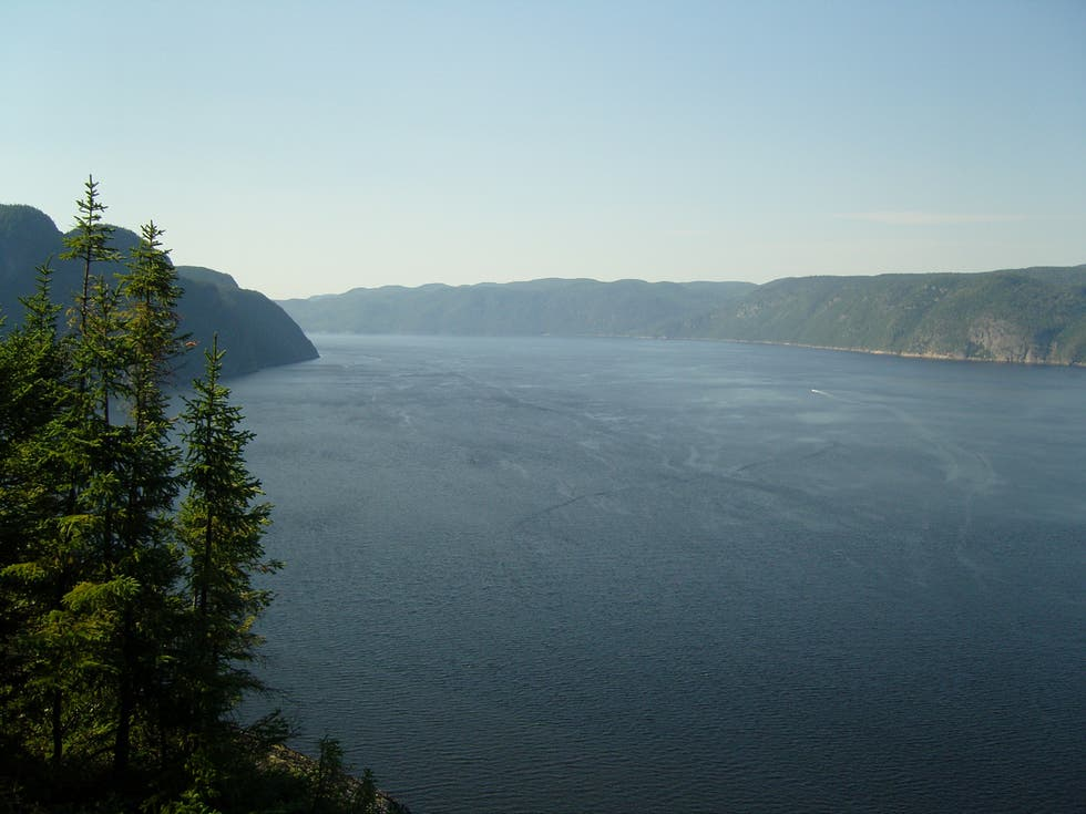 Mare a Saguenay River Fjord