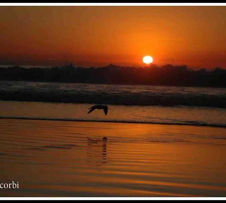 Costa en Playa Ensenada