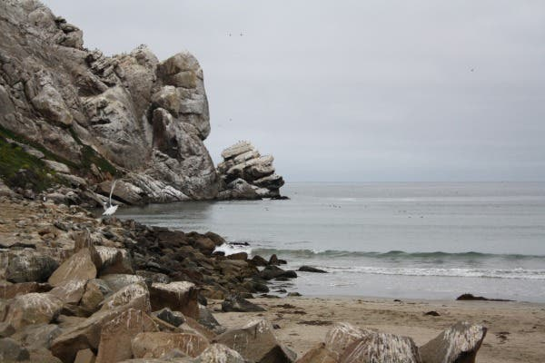 Beach in Morro Bay