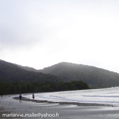 Mar en Cape Tribulation
