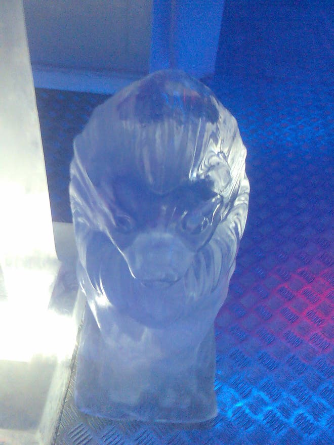 Botella de plástico en Ice Bar Madrid