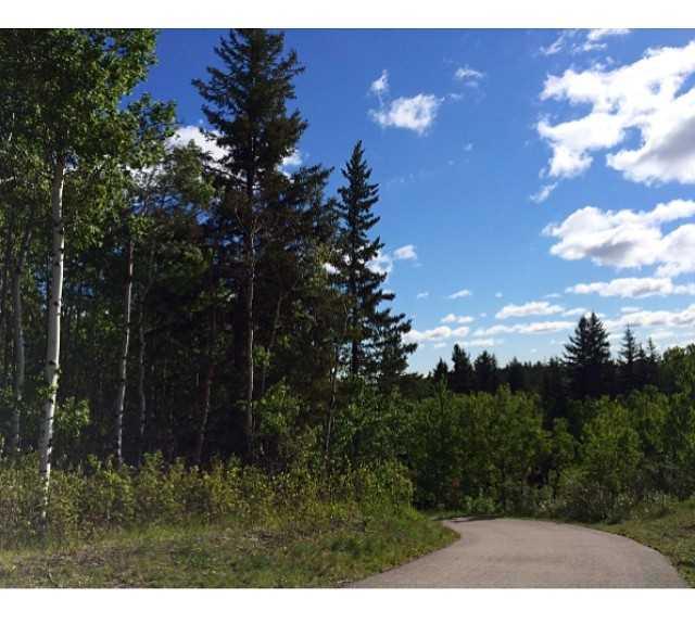Naturaleza en Fish Creek Provincial Park
