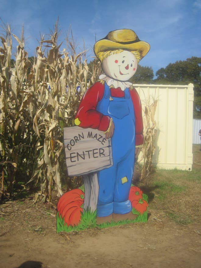Agriculture in Dawsonville