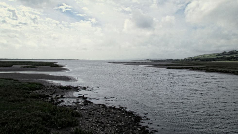 Mare a Kidwelly