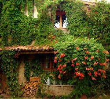 Jardín en Valdemeca