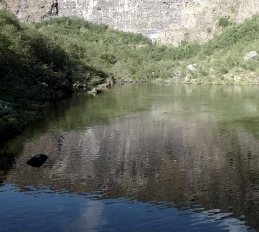 Agua en Lago Botnstjorn