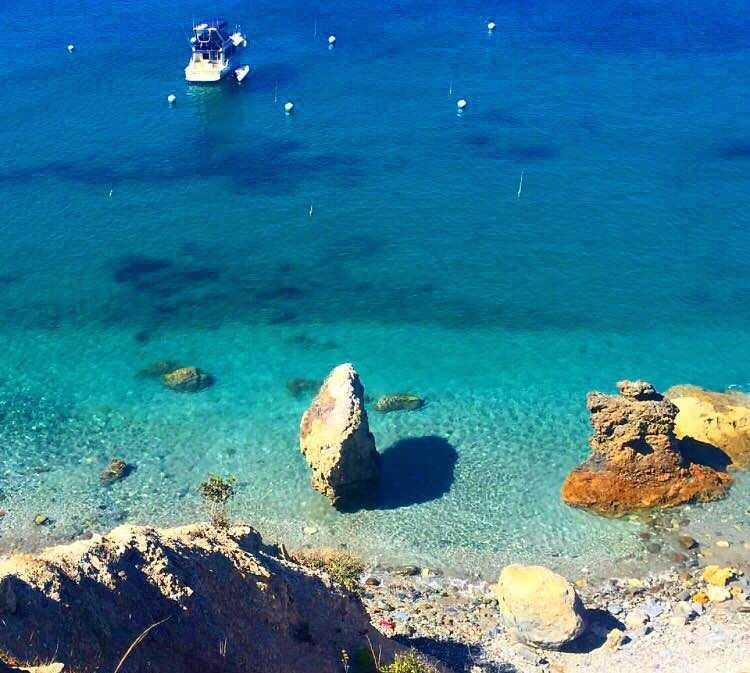 Biologie marine à Catalina Island