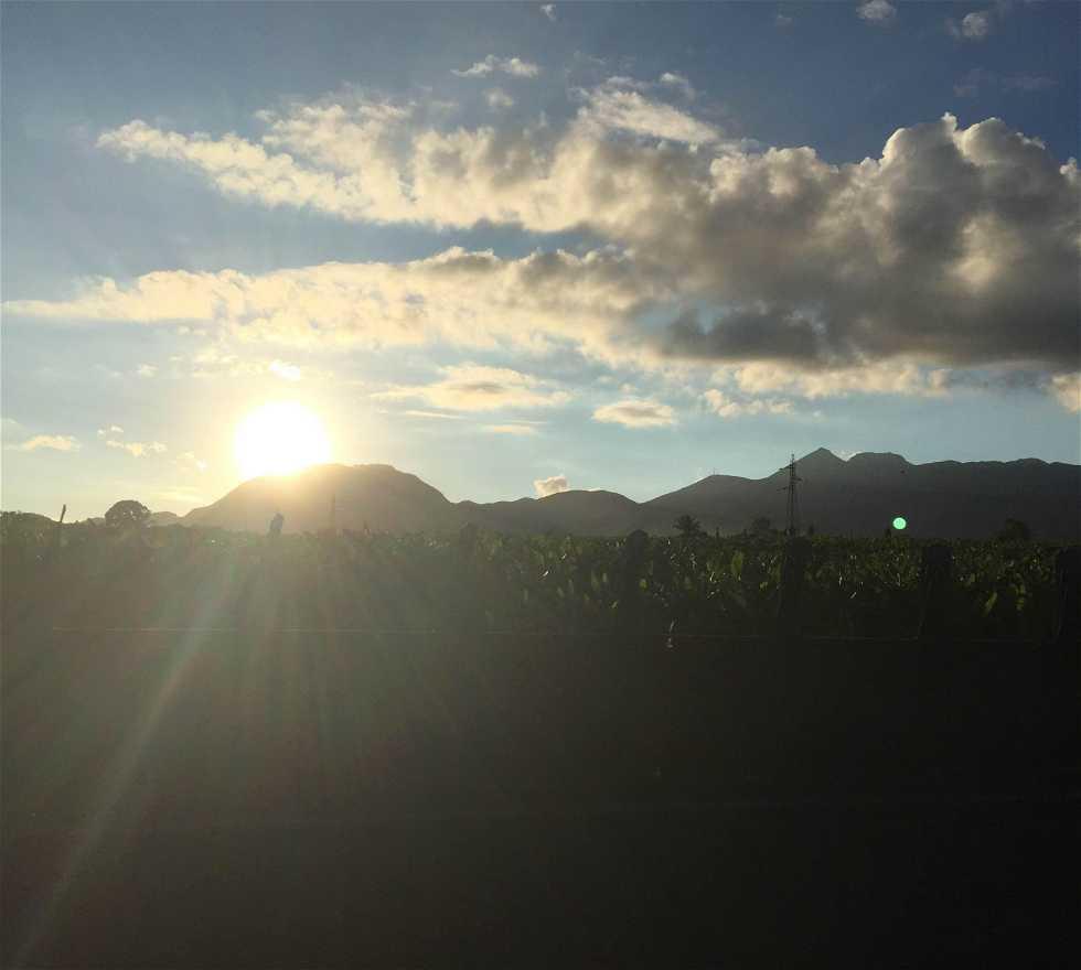 Horizonte en Capesterre-Belle-Eau